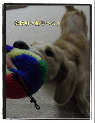 2009091002.jpg