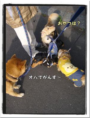 2009091901.jpg