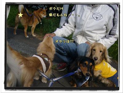 2009091906.jpg