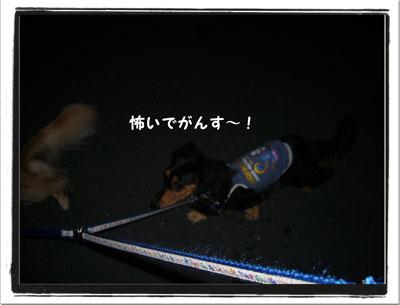 2009092803.jpg