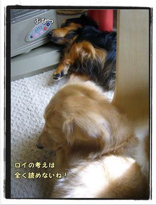 2009101102.jpg