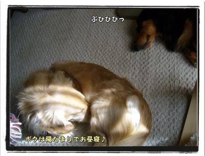 2009101103.jpg