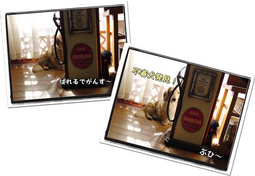 2009101503.jpg