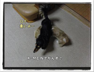 2009101903.jpg