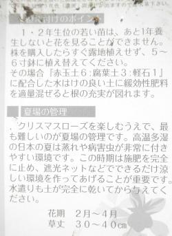 PA160019.jpg
