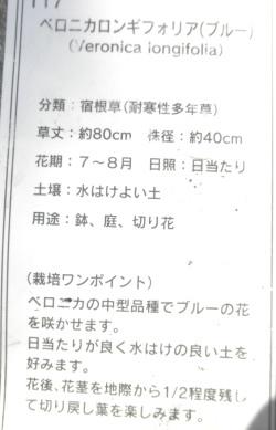 PA160031.jpg