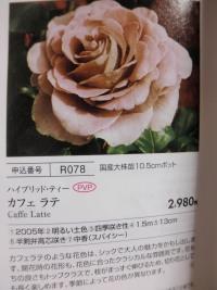 PA170012.jpg