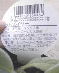PA280010.jpg