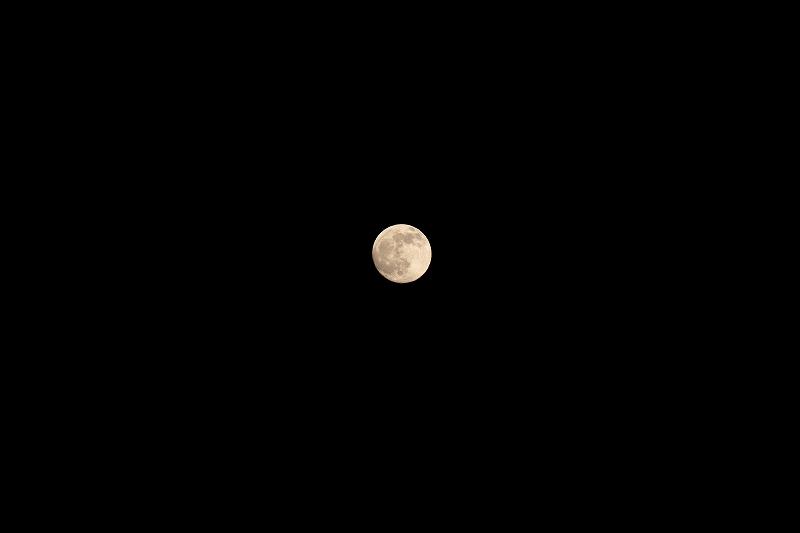 月G_7805