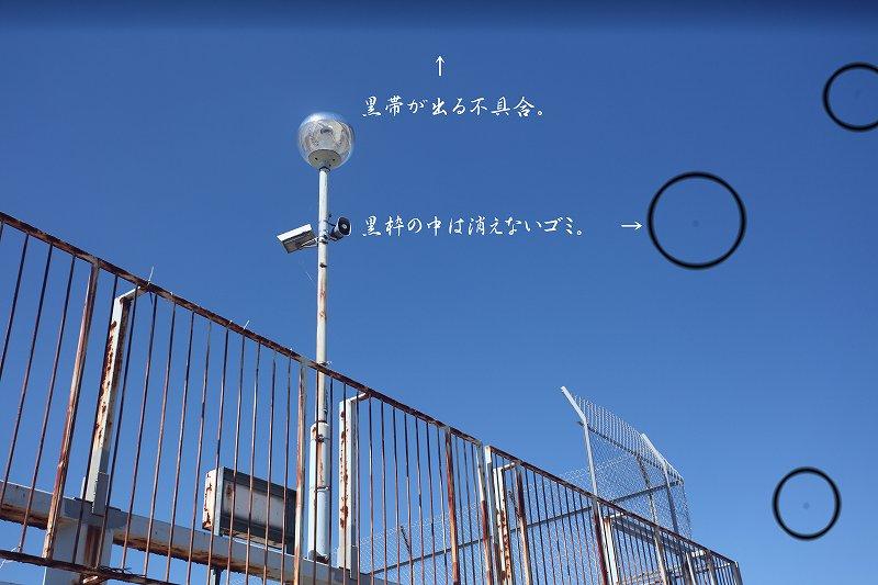 IMG_4449ao.jpg