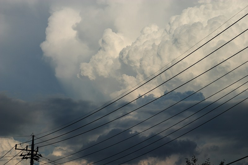 rain6.jpg