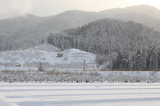 ベルビア100Fで雪景色