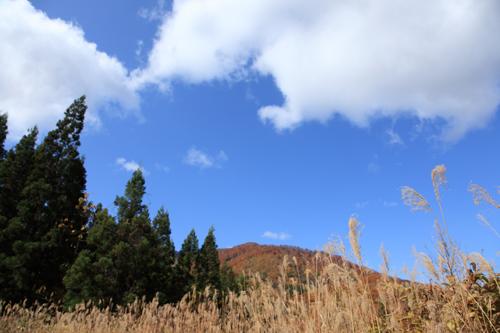 プリセット風景