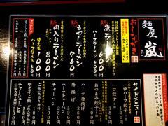 arashi03.jpg