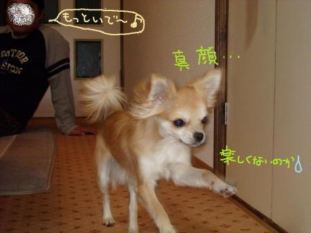 020_convert_20091227144140.jpg