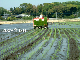 taue20095a.jpg