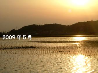 taue20095b.jpg