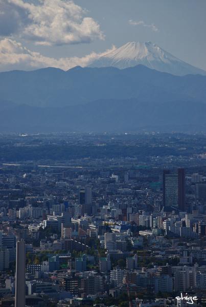 2009 11 03 六本木 058