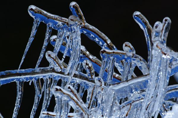 2009 02 01 樹氷祭り 101