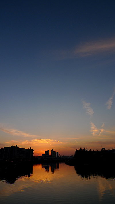 20101220-01.jpg