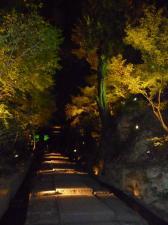 高台寺 階段