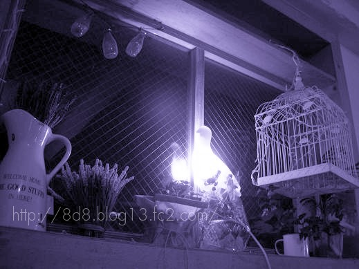 3_20100910151249.jpg