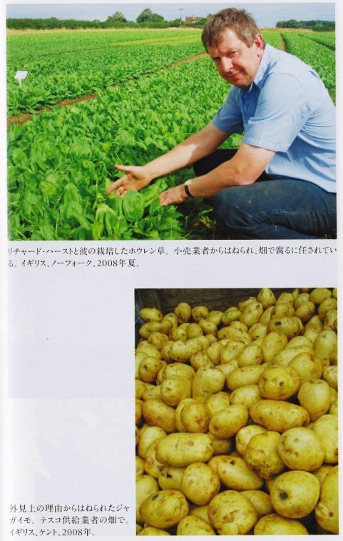 畑廃棄1.jpg