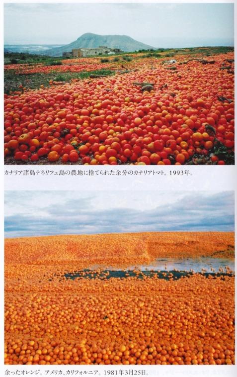 畑廃棄2.jpg