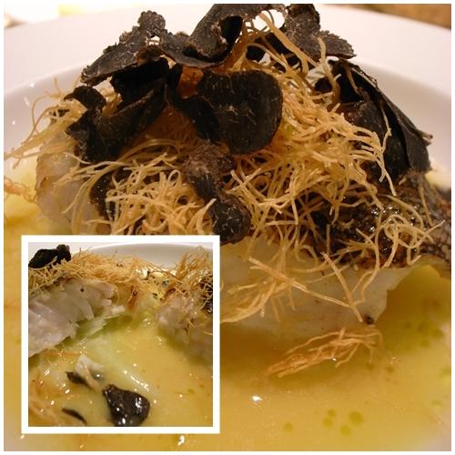 ハシモト魚