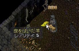 2011a001016.jpg