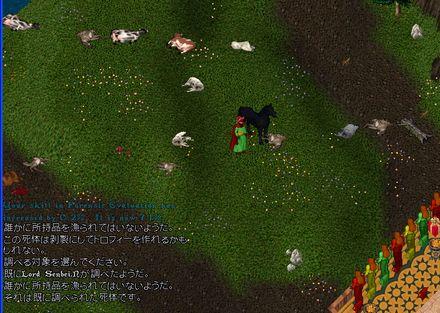 2011a002931.jpg
