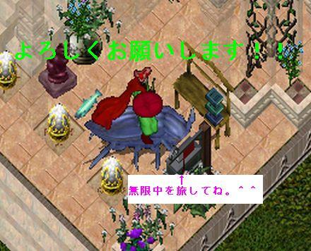 2011b001094.jpg
