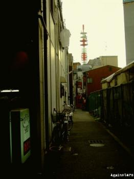 shinkaichi01b.jpg