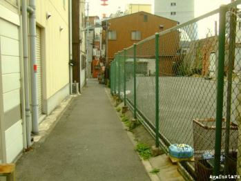 shinkaichi01c.jpg
