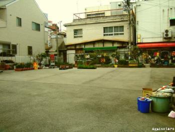 shinkaichi01j.jpg