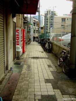 shinkaichi02b.jpg