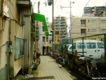 shinkaichi02c.jpg