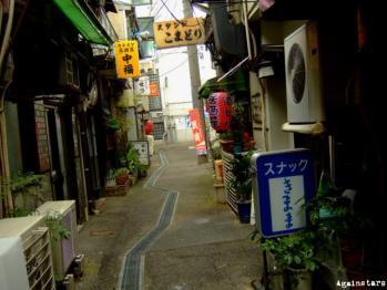 shinkaichi03c.jpg