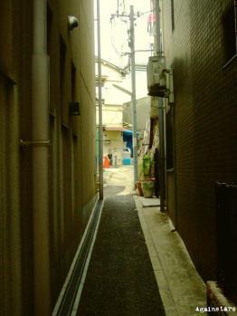 shinkaichi04b.jpg