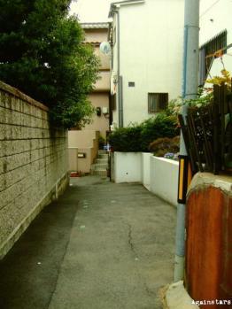 shinkaichi04f.jpg
