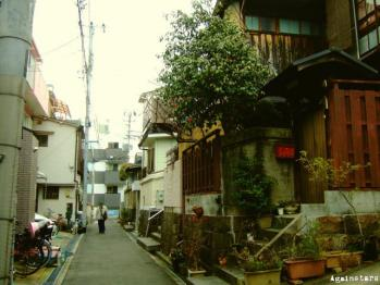 shinkaichi04g.jpg