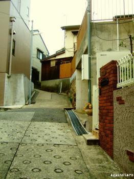 shinkaichi05c.jpg