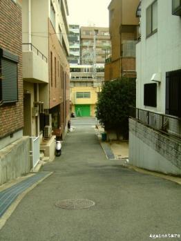 shinkaichi05d.jpg