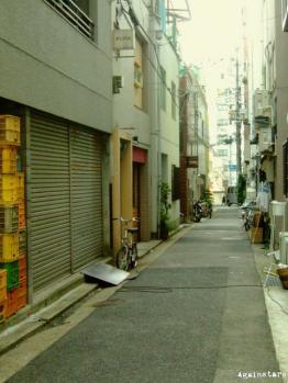 shinkaichi07b.jpg