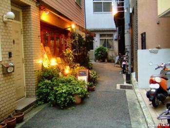 shinkaichi08b.jpg