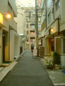 shinkaichi08d.jpg