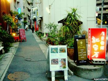 shinkaichi09b.jpg