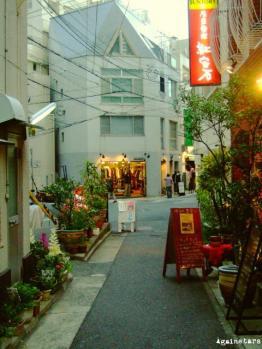 shinkaichi09d.jpg