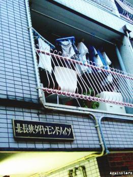 shinkaichi10d.jpg