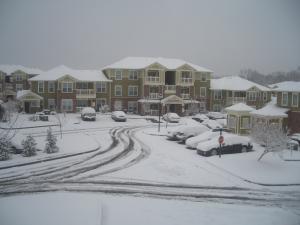 メンフィス-雪-